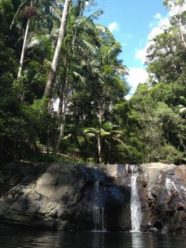 Currumbin Valley