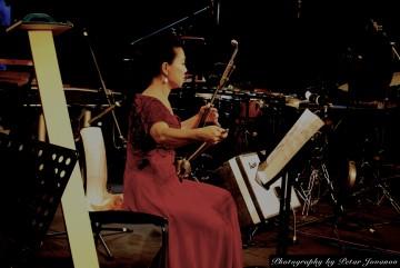 Ying Liu Erhu